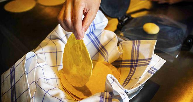 Tortillas Coyo Taco