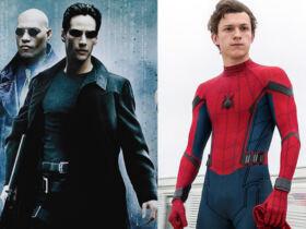 Matrix Spider-man