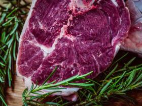 Dieta Carnivora ©Jez Timm