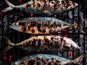 Sardinhas ©Clint Bustrillos